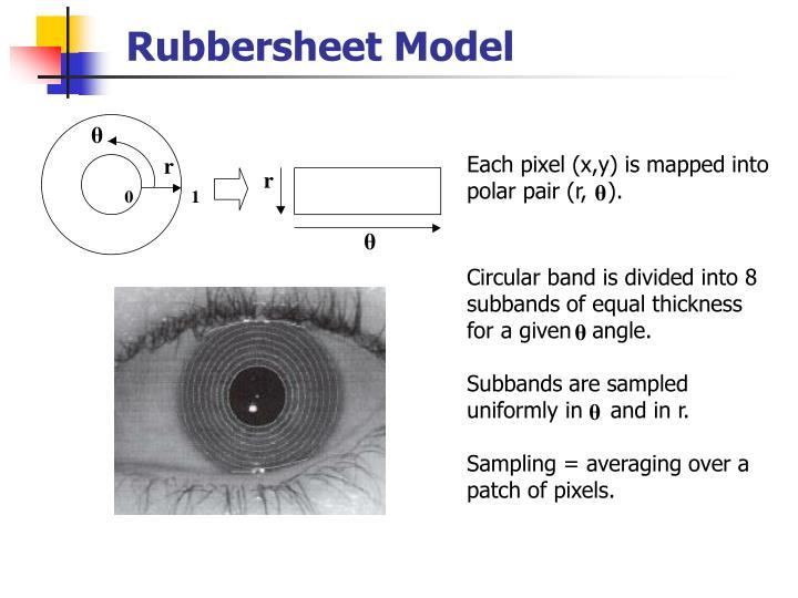 Rubbersheet Model