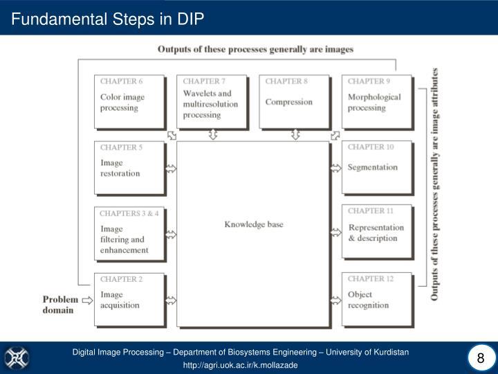 Fundamental Steps in DIP