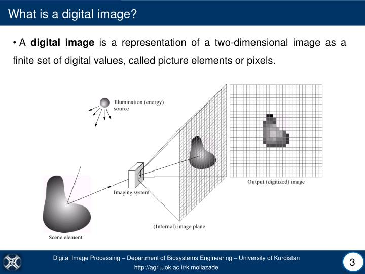 What is a digital image?
