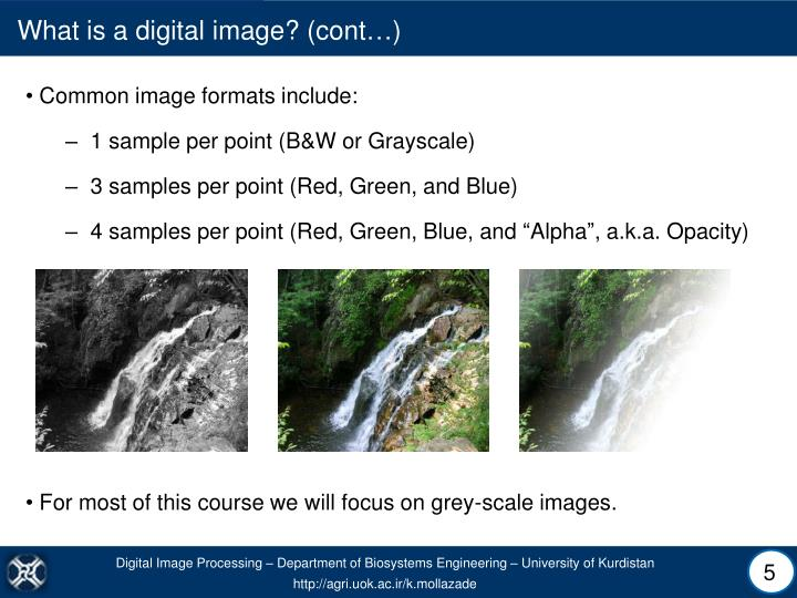 What is a digital image? (cont…)