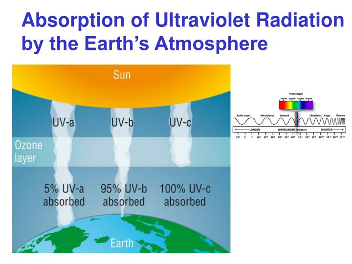 Absorption of Ultraviolet Radiation by the Earth's Atmosphere