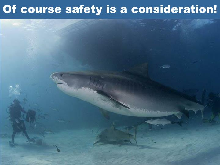 Of course safety is a consideration!
