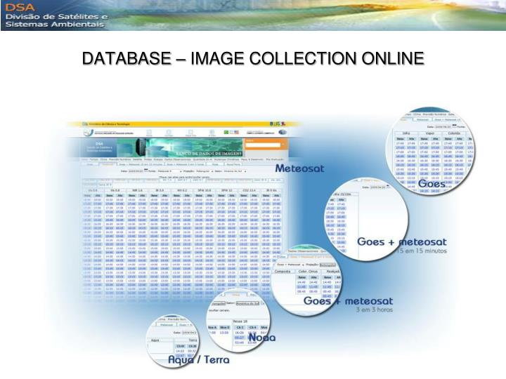 DATABASE – IMAGE COLLECTION ONLINE
