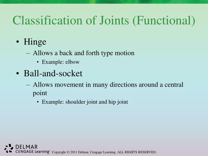 Classification of Joints (Functional)