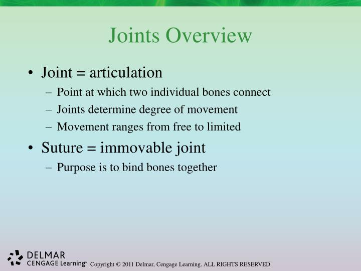 Joints Overview