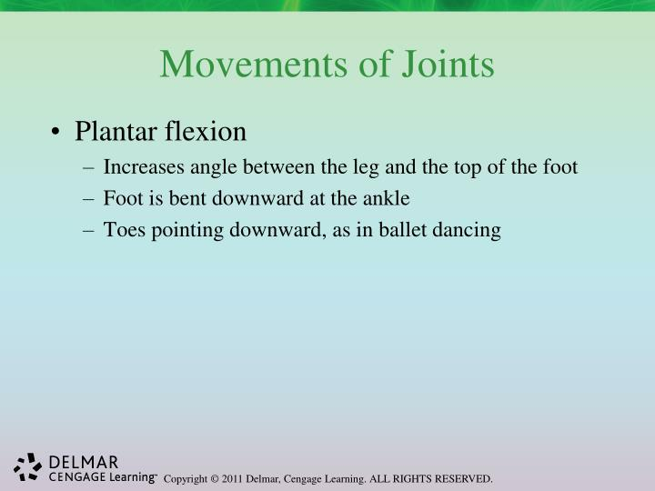 Movements of Joints