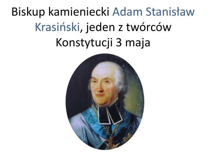 Biskup kamieniecki
