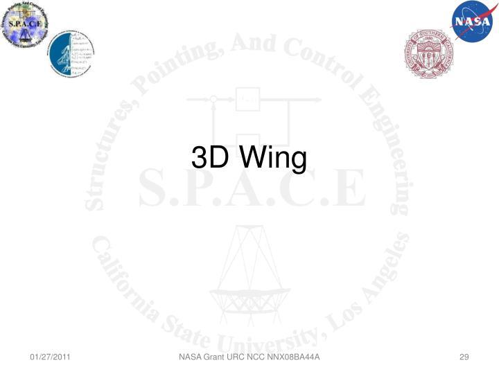 3D Wing