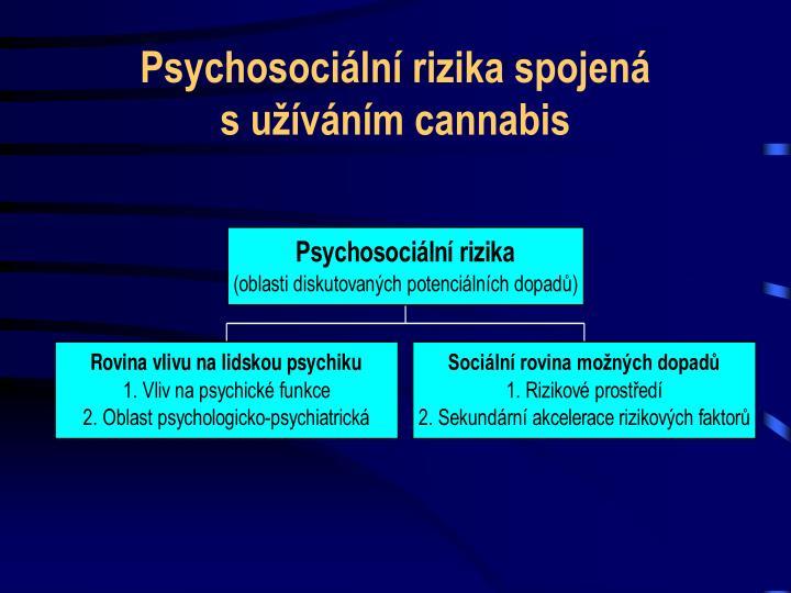 Psychosociální rizika spojená