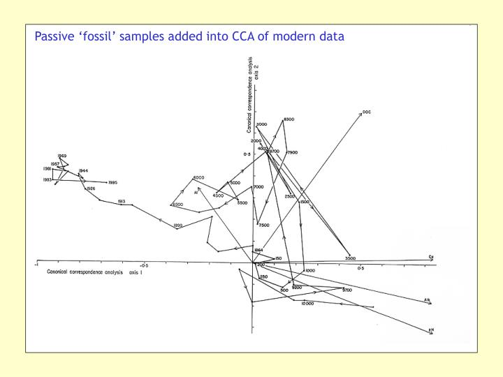 Passive 'fossil' samples added into CCA of modern data