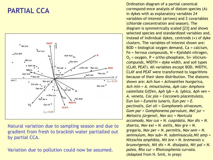 Ordination diagram of a partial canonical correspond-ence analysis of diatom species (A) in dykes with as explanatory variables 24 variables-of-interest (arrows) and 2 covariables (chloride concentration and season). The diagram is symmetrically scaled [23] and shows selected species and standardized variables and, instead of individual dykes, centroids (•) of dyke clusters. The variables-of-interest shown are: BOD = biological oxygen demand, Ca = calcium, Fe = ferrous compounds, N = Kjeldahl-nitrogen, O