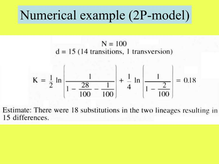 Numerical example (2P-model)