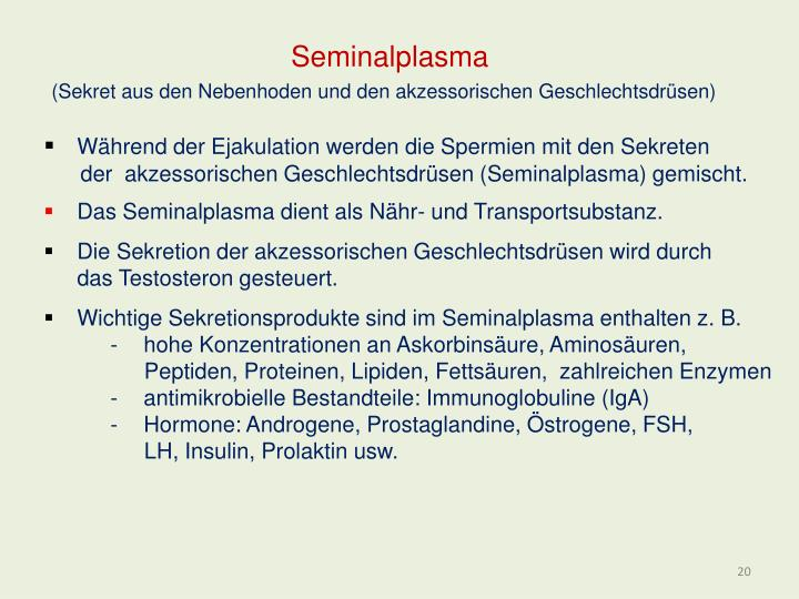 Seminalplasma