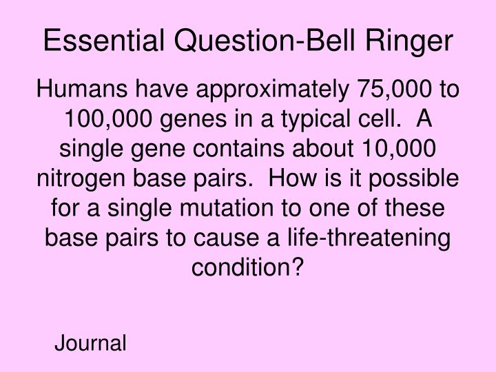 Essential Question-Bell Ringer