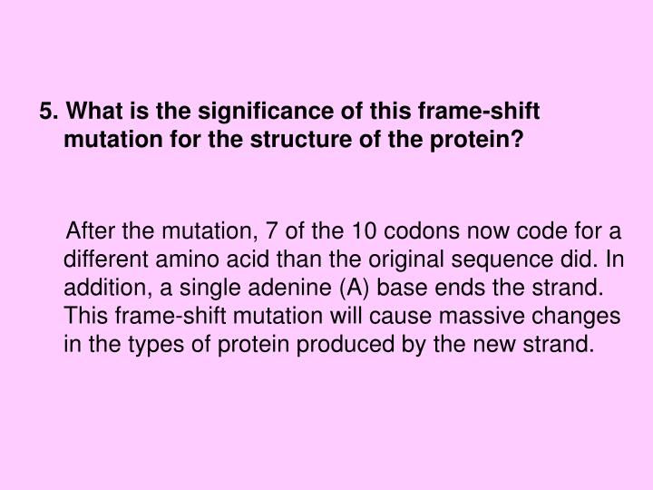 5. What is the significance of this frame-shift mutation for the structure of the protein?