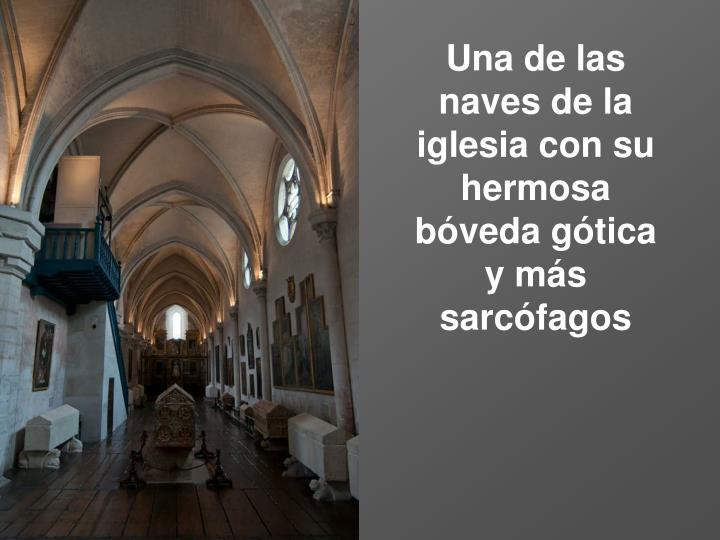 Una de las naves de la iglesia con su hermosa bóveda gótica y más sarcófagos