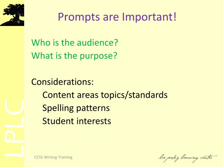Prompts are Important!