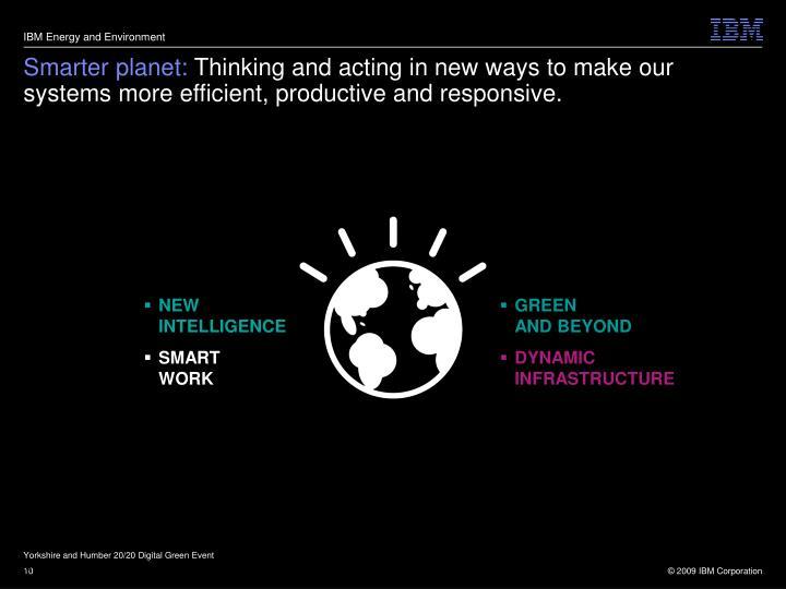 IBM Energy and Environment