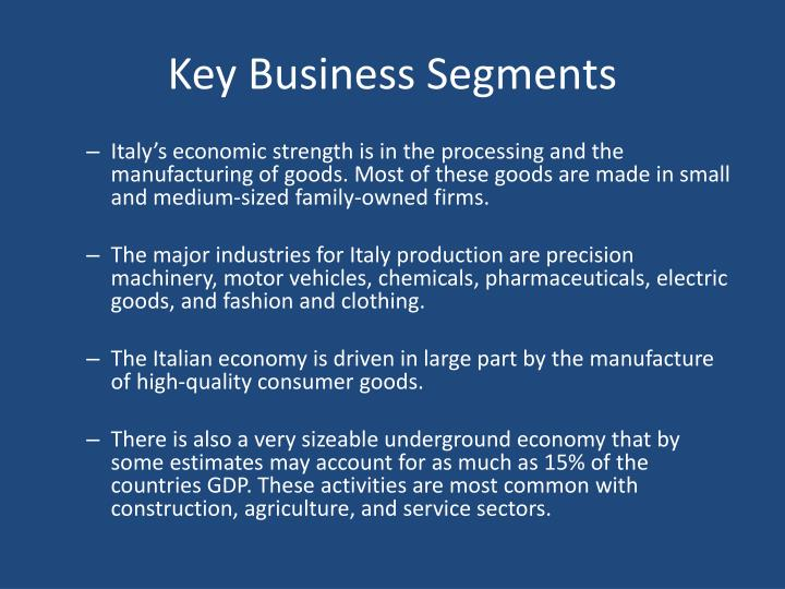 Key Business Segments