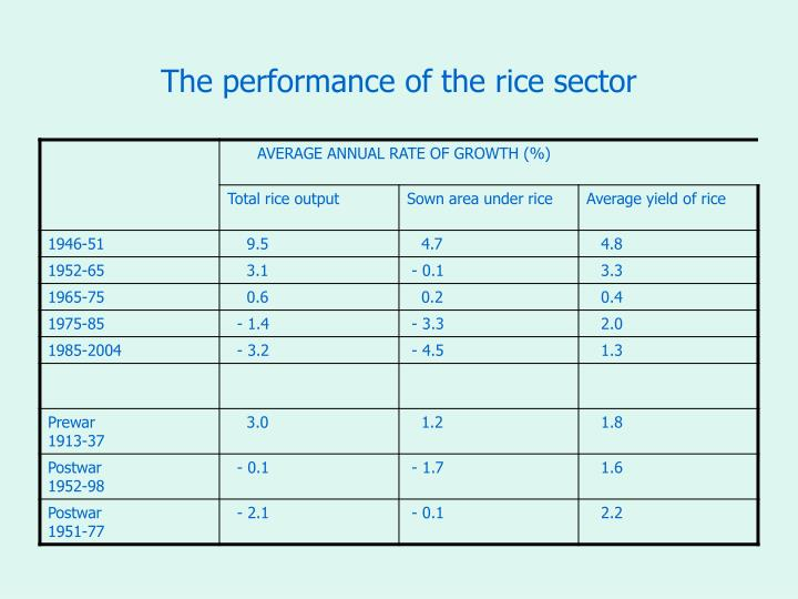 The performance of the rice sector