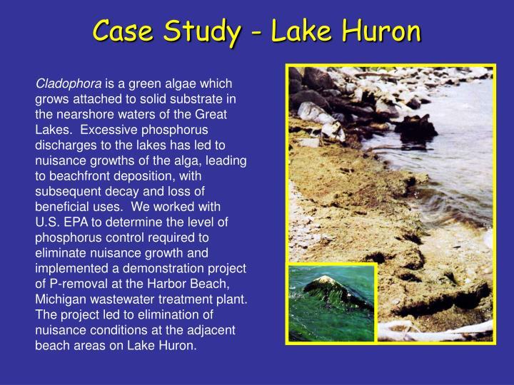 Case Study - Lake Huron