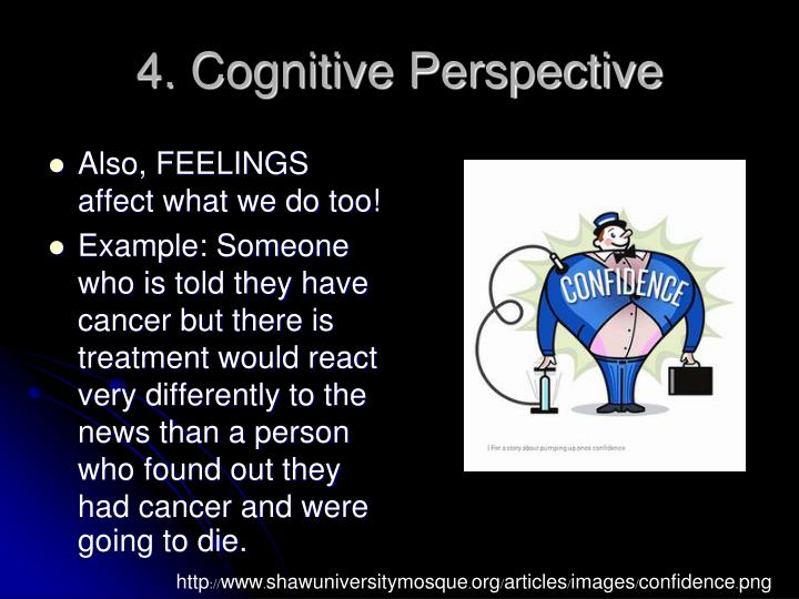 4. Cognitive Perspective