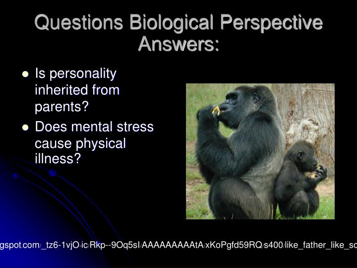 Questions Biological Perspective Answers: