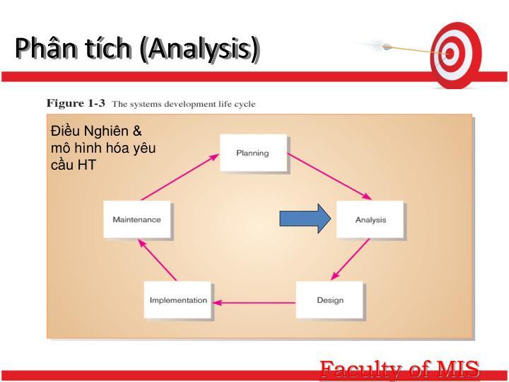 Phân tích (Analysis)