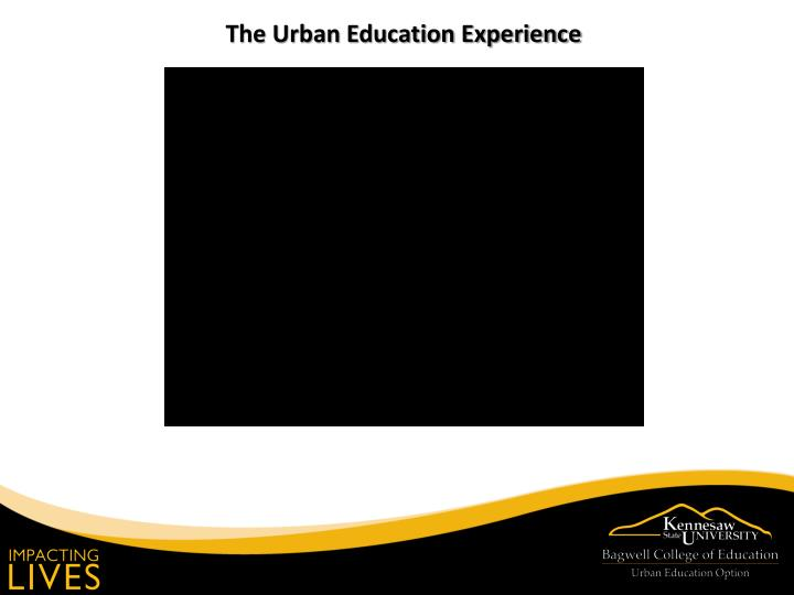 The Urban Education Experience