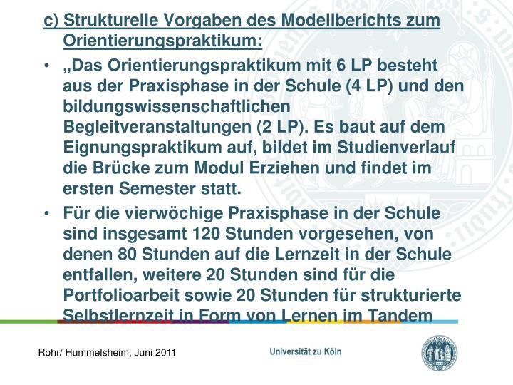 c) Strukturelle Vorgaben des Modellberichts zum Orientierungspraktikum: