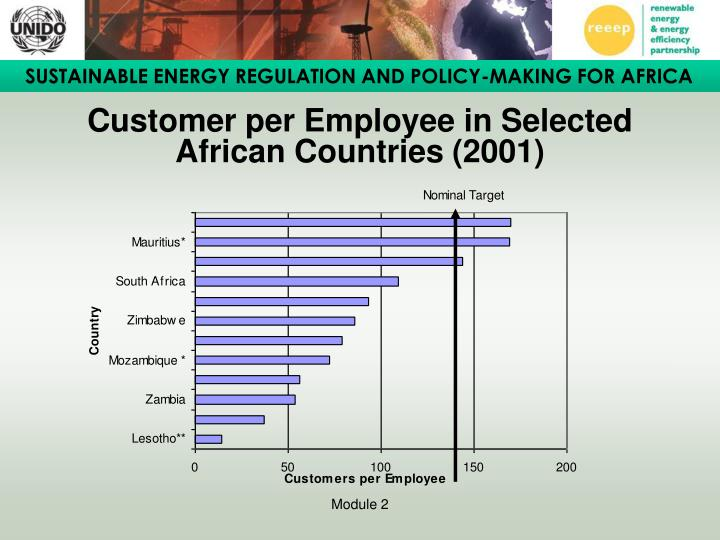 Customer per Employee in Selected African Countries (2001)