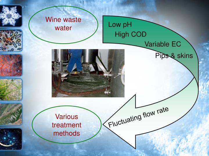 Wine waste water