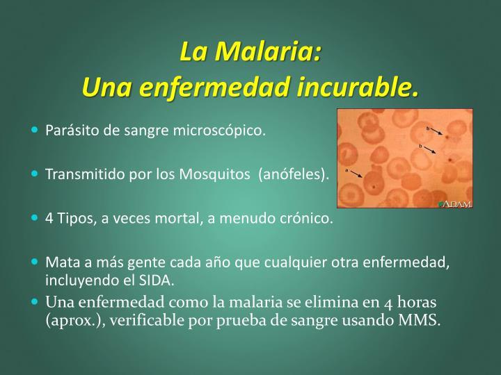 La Malaria: