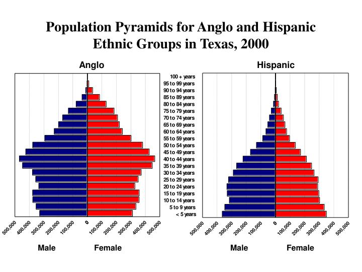 Population Pyramids for Anglo and Hispanic