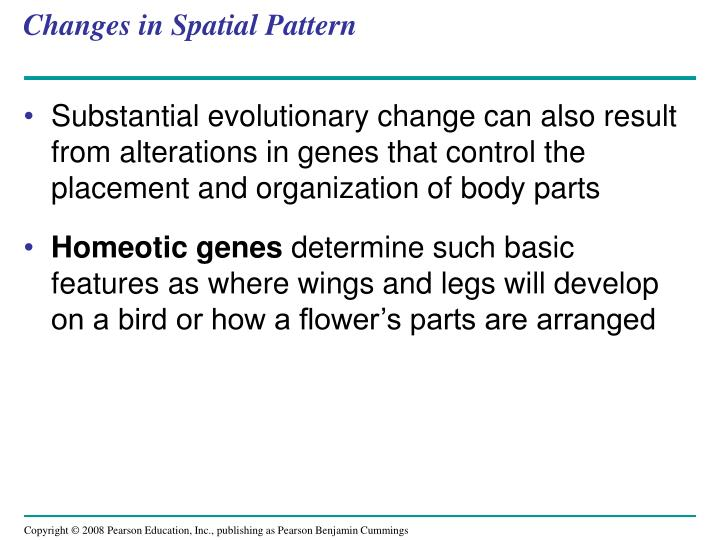 Changes in Spatial Pattern