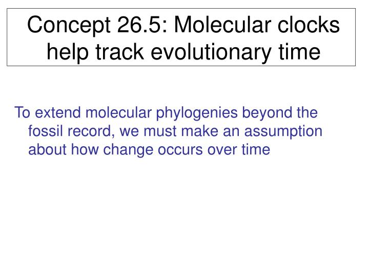 Concept 26.5: Molecular clocks help track evolutionary time