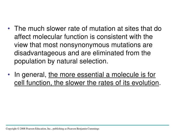 The much slower rate of mutation at sites that do affect molecular function is consistent with the view that most nonsynonymous mutations are disadvantageous and are eliminated from the population by natural selection.