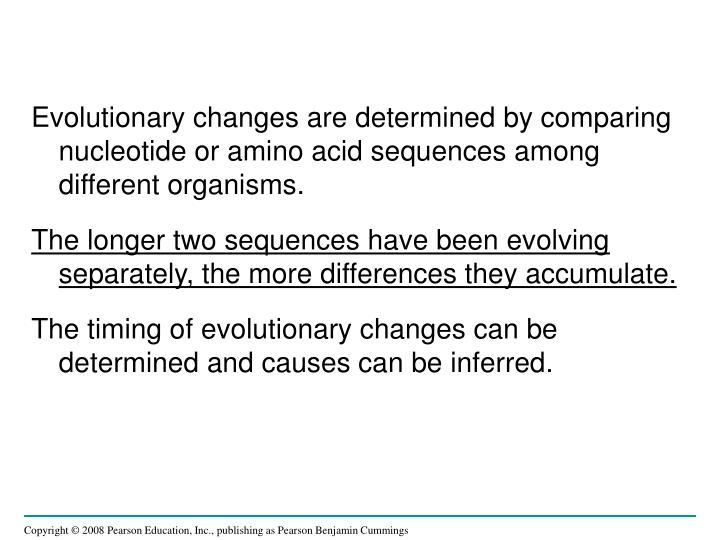 Evolutionary changes are determined by comparing nucleotide or amino acid sequences among different organisms.