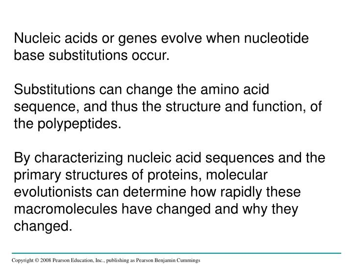 Nucleic acids or genes evolve when nucleotide base substitutions occur.
