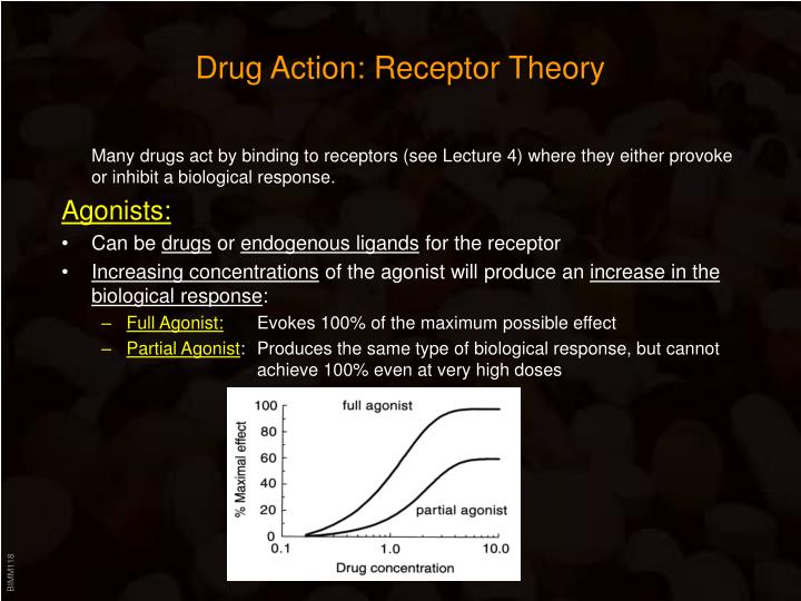 Drug Action: Receptor Theory