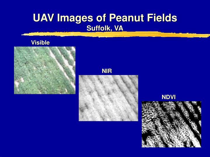 UAV Images of Peanut Fields