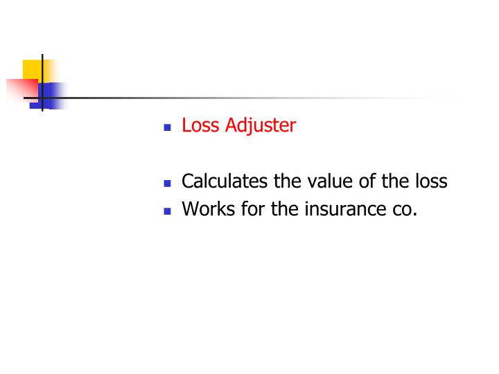 Loss Adjuster