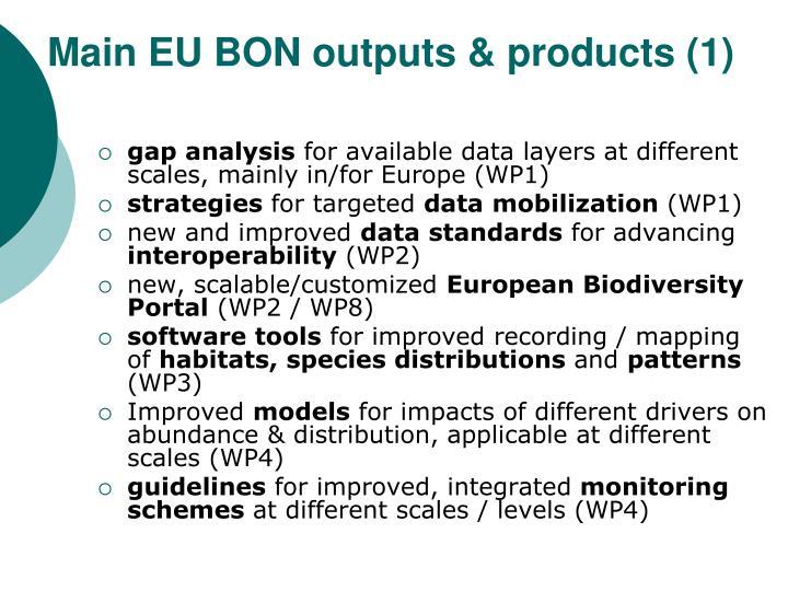 Main EU BON outputs & products (1)