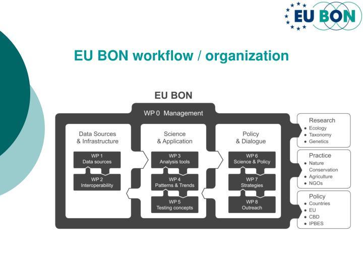 EU BON workflow / organization