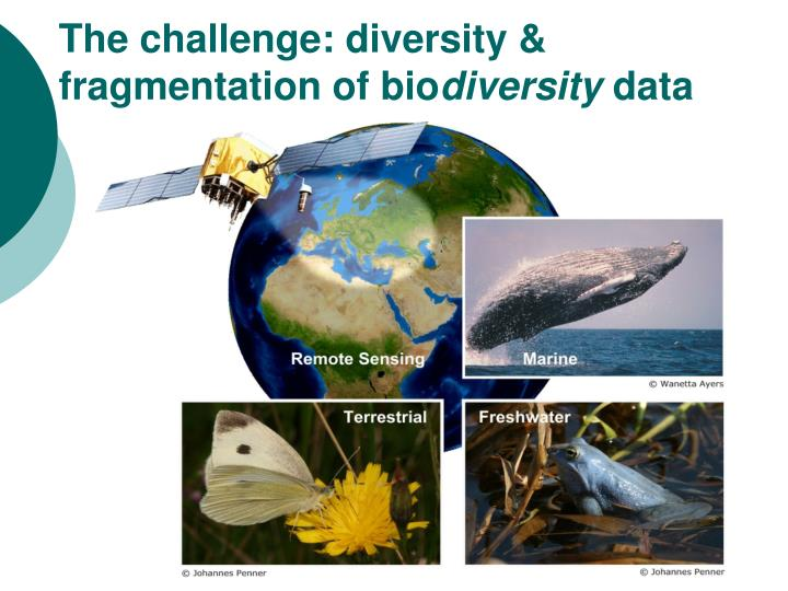 The challenge: diversity & fragmentation of bio