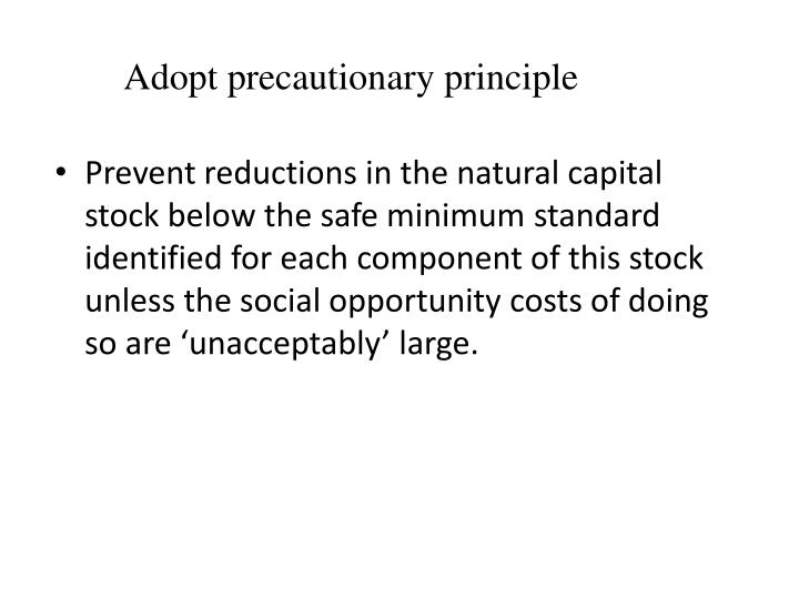 Adopt precautionary principle
