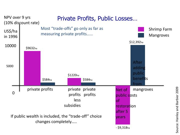 Private Profits, Public Losses…