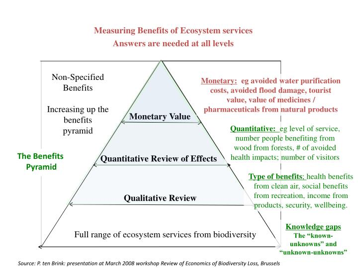 Measuring Benefits of Ecosystem services