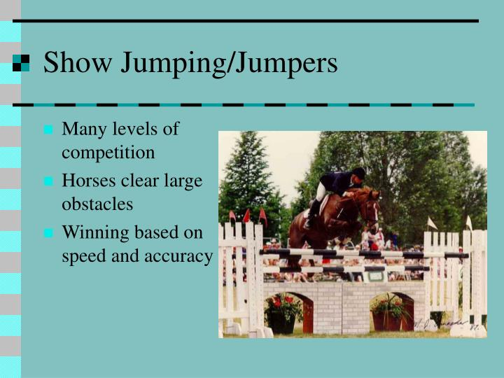 Show Jumping/Jumpers