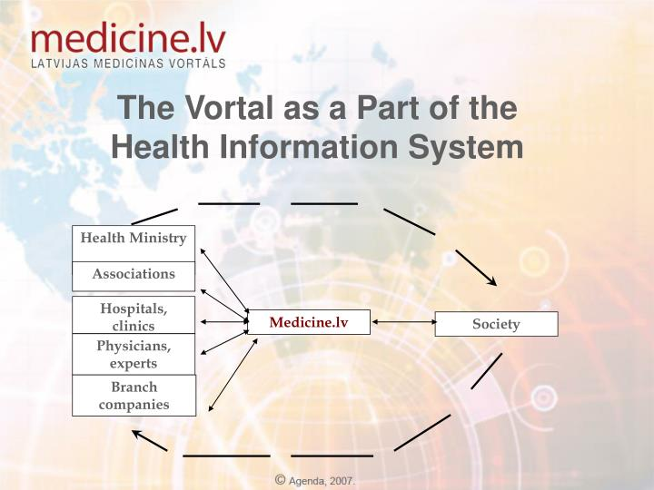 The Vortal as a Part of the Health Information System